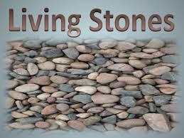 Spiritual Blog - Living Stones