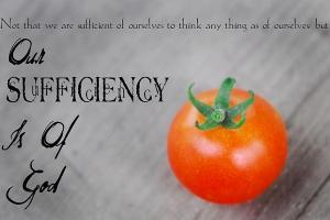 Spiritual Blog - Sufficient