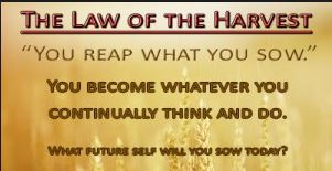 Spiritual Blog - Harvest Law