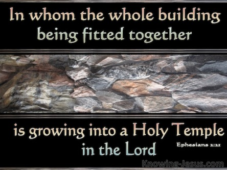 Spiritual Blog - Growing Together