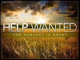 spiritual-blog-harvest