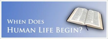 spiritual-blog-life-bible