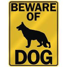 spiritual-blog-dogs