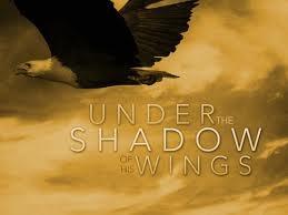 Spiritual Blog - Shadows
