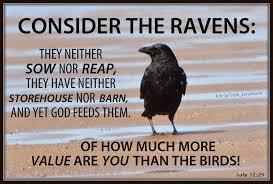 Spiritual Blog - Ravens